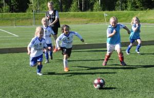 Idrettens dag 2017 (5)